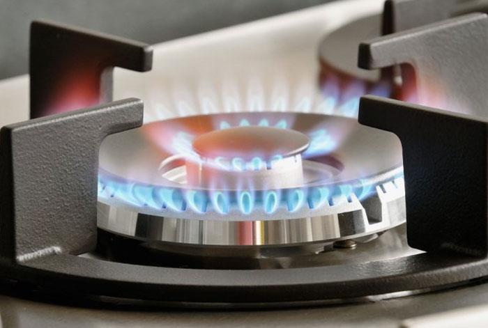 Inspection de combustion de gaz dans les appareils